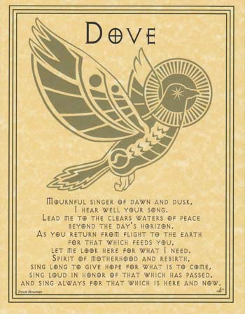 Dove Prayer