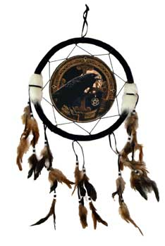 Raven dream catcher